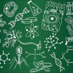 رتبه های برتر چگونه زیست را مطالعه میکنند؟